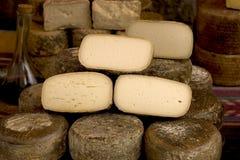 испанский язык сыра Стоковое Изображение RF