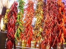 испанский язык m spices tapas Стоковое фото RF