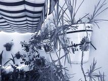 Испанское андалузское патио Стоковые Изображения
