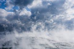 Испарение на море Sargasso стоковая фотография