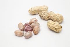 Испаренные арахисы треснули раковину, тайскую местную закуску Стоковая Фотография