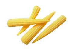 Испаренные corns младенца Стоковое Изображение