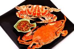 Испаренный краб моря с соусом морепродуктов Стоковое фото RF