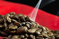 испаряться кофе фасолей Стоковое фото RF