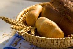 испеченная еда Стоковые Фото