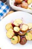 Испеченная картошка с красным луком стоковая фотография