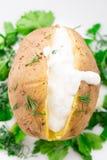 Испеченная картошка с cream соусом стоковое фото
