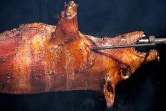 испеченная свинья Стоковые Изображения RF