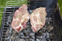 Испеченное мясо говядины и свинины на гриле Стоковые Изображения