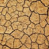 испеченное поле земли стоковое фото rf