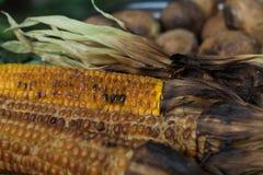 Испеченные мозоль и картошки на гриле стоковое изображение rf