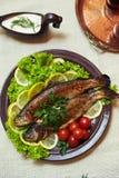 испеченные овощи рыб Стоковое фото RF