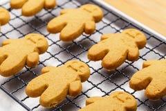Испеченные печенья пряника Стоковые Фотографии RF