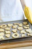 испеченные печенья свеже стоковая фотография