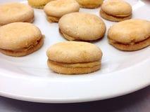 испеченные печенья Стоковое фото RF