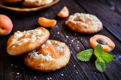 Испеченные пироги абрикоса покрытые с streusel Стоковые Изображения RF