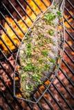 Испеченные рыбы на огне Стоковые Изображения