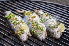 Испеченные рыбы с лимоном и специями Стоковая Фотография