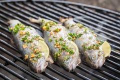 Испеченные рыбы с лимоном и специями Стоковые Изображения RF