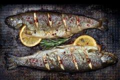 Испеченные рыбы форели с лимоном и розмариновым маслом и специей на натюрморте grunge металлопластинчатом стоковое фото
