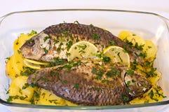Испеченные рыбы Стоковая Фотография RF