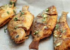 Испеченные рыбы Стоковое фото RF