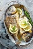 Испеченные рыбы Dorado Лещ моря или зажаренные рыбы dorada Стоковая Фотография RF