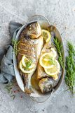 Испеченные рыбы Dorado Лещ моря или зажаренные рыбы dorada Стоковые Изображения
