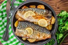 Испеченные скумбрия и картошки рыб Стоковые Изображения RF