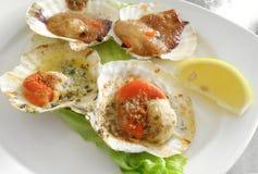 испеченные стартеры продуктов моря scallops Стоковые Фото