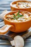 Испеченные цыпленок, грибы и сыр в сметанообразном соусе Стоковая Фотография