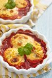 Испеченные яичка половин в томатном соусе Стоковые Фото