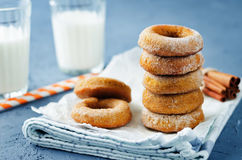 Испеченные donuts тыквы с стеклами молока Стоковые Изображения