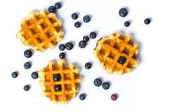 Испеченные waffles и голубики на белизне Стоковое Изображение RF
