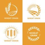 Испеченный логотип пшеницы Ярлык зерна пшениц поля, печет элементы Комплект иллюстрации вектора insignia выпечки еды иллюстрация вектора