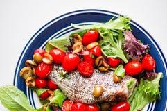 Испеченный морской волк с томатами и базилик на белой предпосылке Стоковая Фотография