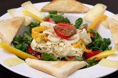 испеченный салат овечек feta сыра Стоковое фото RF