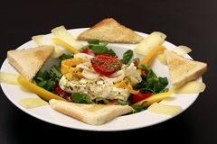 испеченный салат овечек feta сыра Стоковое Изображение