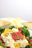 испеченный салат овечек feta сыра Стоковые Фото