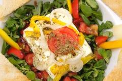 испеченный салат овечек feta сыра Стоковые Фотографии RF