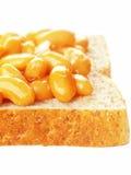 испеченный сандвич фасолей Стоковые Фото