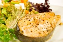 испеченный стейк салата salmon Стоковые Фотографии RF