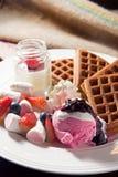 Испеченный waffle с зефиром и мороженым Стоковая Фотография