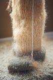 Используемый кот царапая столб Стоковые Фотографии RF