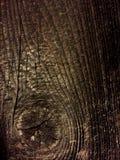 Исправленная деревянная предпосылка Стоковая Фотография RF