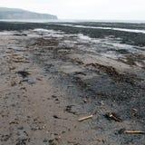 Испуг побережье Англия северного Йоркшира отверстия Стоковое Изображение RF