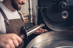 Испуская лучи бородатый работник контролируя жарящ фасоли стоковые изображения