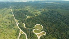 Испытайте дорогу в виде с воздуха леса сток-видео
