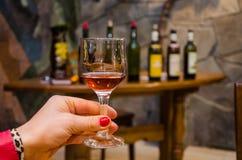 Испытание вина Стоковые Фотографии RF