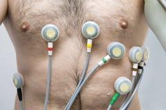 Испытание EKG Стоковые Изображения RF